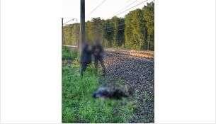 ЧП произошло между станциями Буготак и Восточная.