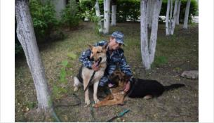 Полицейский-кинолог Юлия Шейфер со своими подопечными (Раза слева)