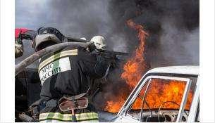 С начала 2021 года произошло 247 возгораний автомобилей