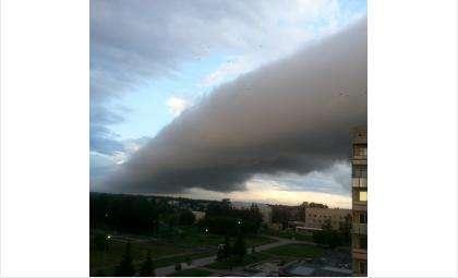 Ураган неожиданно обрушился на Бердск вечером 12 июля