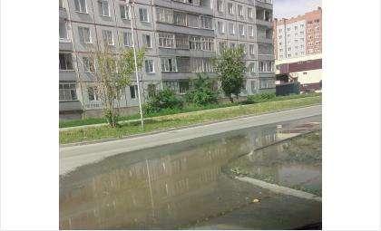 Сточные воды, ужасно воняя, текут по ул. Рогачева