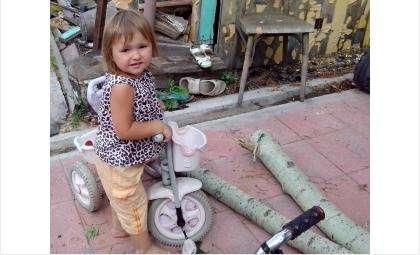 На 2-летнюю Полину после урагана упала ветка тополя