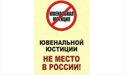 В Бердске состоится пикет против антисемейных законов