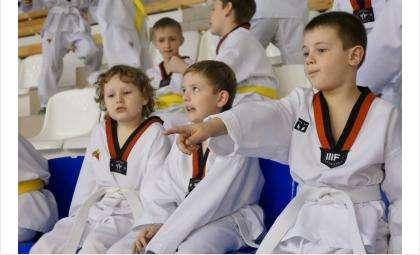 Юные спортсмены получили опыт выступлений