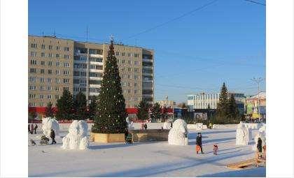 Главная ёлка Бердска установлена на площади Горького