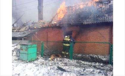 Во время пожара погибла хозяйка дома