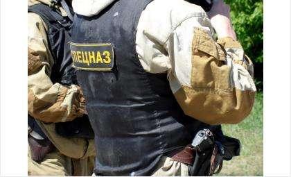 Полицейский спецназ задержал убийцу в Чановском районе