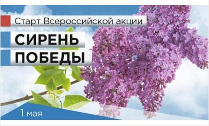 Фото волонтеры70.рф