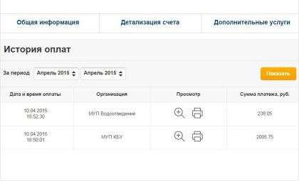 На сайте Новосибирскэнергосбыт можно заплатить за тепло, воду и стоки