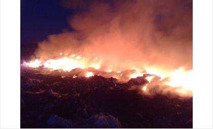 Пожар на бердской свалке