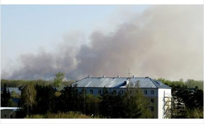 Дымом затянуло Бердск