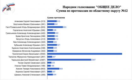 Итоги народного голосования по округу №12