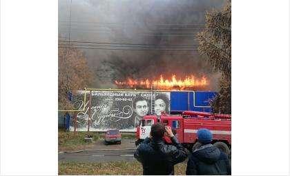 """Пожар в сауне """"Ирония судьбы"""" в Бердске"""