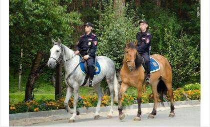 Конная полиция появится в Бердске