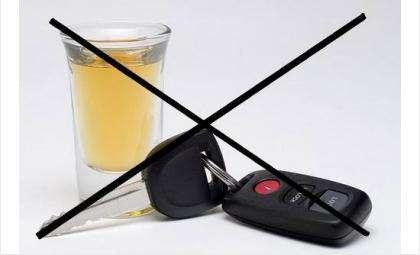 Черный список водителей-пьяниц. Фото 19.mvd.ru