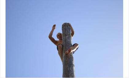 Добраться до вершины столба удалось не всем!