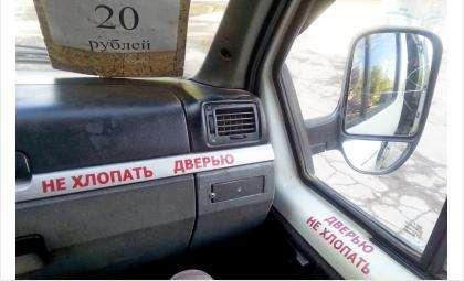 Фото © Галины Жильцовой из архива Бердск-онлайн