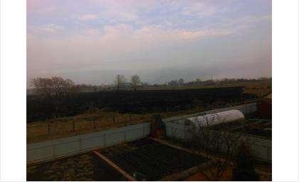 Поле в Южном потушено. Огонь подошел к домам на расстояние метра