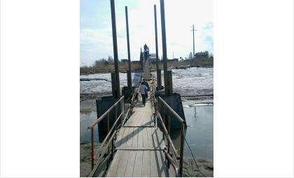 Понтонный мост для дачников - единственный пеший путь к их огородам