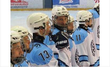 Восемь юниорских команд выступят в финале Первенства России по хоккею в Бердске