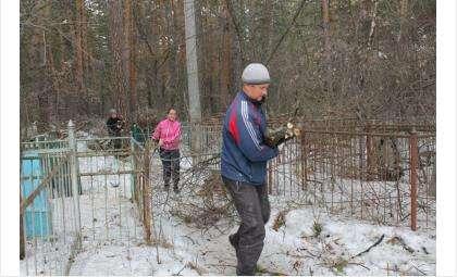 """Акция """"Иваны помнящие"""" - нужны добровольцы для очистки территории старого кладбища Бердска"""