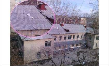 Детская поликлиника в Микрорайоне Бердска. Крышу около недели назад починили матрасиком