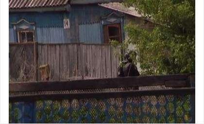 Полиция штурмовала дом, в котором засел злоумышленник с ружьем (кадр из видео)