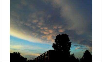 Вымеобразные облака над Бердском. Видели?