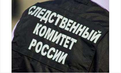 Фото nsk.sledcom.ru