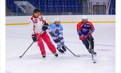 Уроки хоккейного мастерства