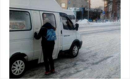 Бердские маршрутки обеспечивают перевозку пассажиров во все районы города