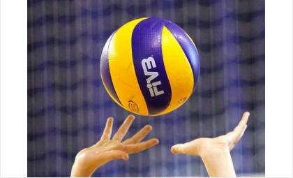 В Бердске пройдет чемпионат по волейболу среди мужчин
