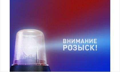 Розыск! Водитель на черном джипе сбил старушку в Бердске и скрылся