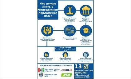 Что такое Молодежный парламент Новосибирской области