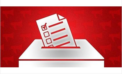 Программы кандидатов в Молодежный парламент от Бердска