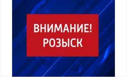 Подробности. Мальчика в Белокаменном в Бердске сбила женщина на серебристой «Тойоте»
