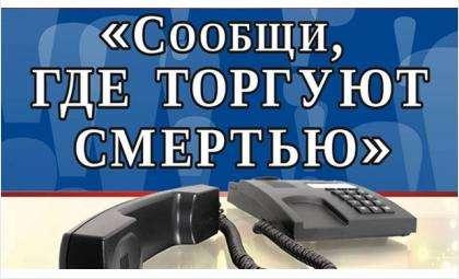 В Бердске проводится акция «Сообщи, где торгуют смертью»