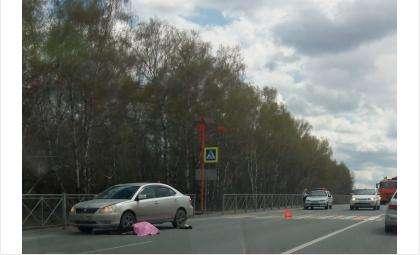 Пенсионерка погибла на пешеходном переходе на трассе М-52 - поворот на «Бетолекс»