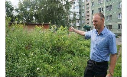 """Николай Яковченко, директор УК """"Вымпел"""", недоволен, что муниципалитет не скашивает траву на своей территории"""
