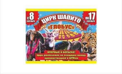 Впервые! Тот самый Московский цирк из детства выступает в Бердске