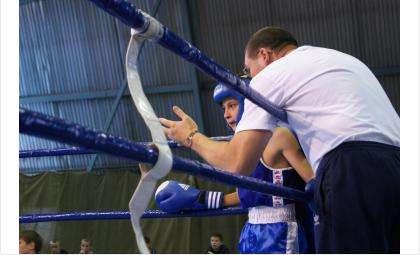 Бердчан приглашают на турнир по боксу памяти Владимира Шипичука