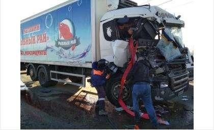 Пассажирку Скании доставали спасатели МЧС