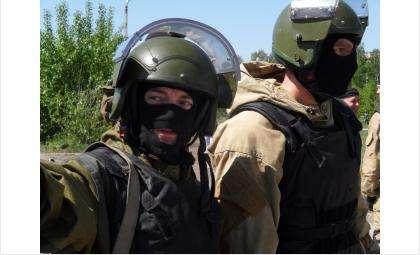 Сотрудники ФСБ задержали производителей марихуаны