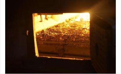 Пожарные советуют заканчивать топить печь за три часа до сна