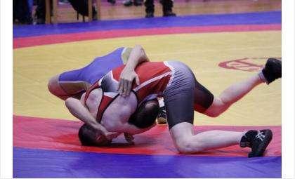 На турнир приехали 156 участников из восьмирегионов России и городов Казахстана
