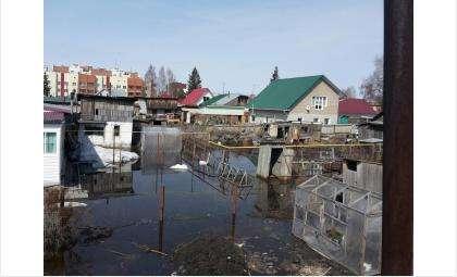 В Бердске решат проблему подтопления участков грунтовыми водами