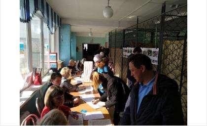 Участок голосования за проекты благоустройства в школе №8