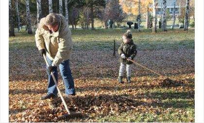 Нужно убрать мусор,листву, поросль, побелить основания деревьев и бордюры