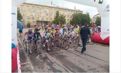 Бердские велосипедисты показали себя с лучшей стороны