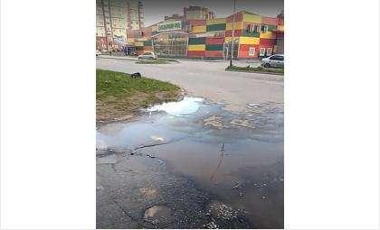 Вода стремительно разлилась по ул. Рогачёва